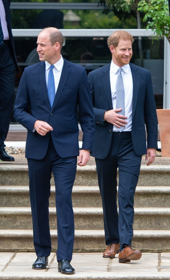 Harry met brother William at their mother Diana's statue unveiling this month