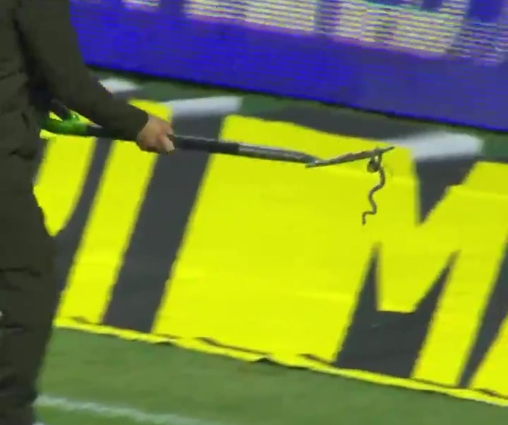 Watch as SNAKE slithers onto football pitch and suspends play as groundsman  uses pitchfork to carry reptile away – Football Reporting
