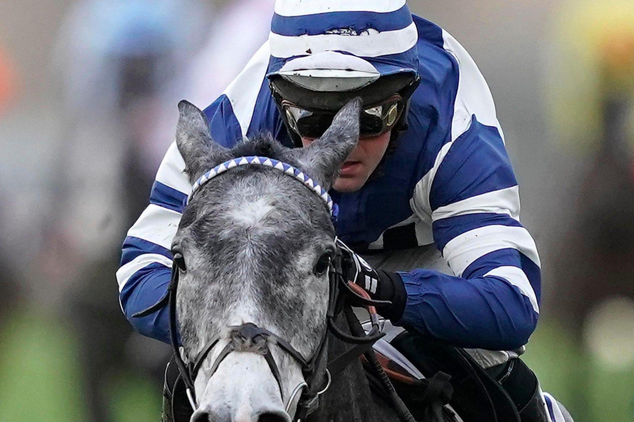 Equine Flu: Equine Flu Outbreak Results In ALL UK Horse Race Meetings