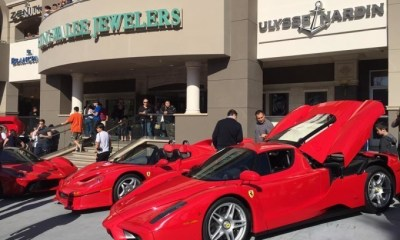 Enzo- David Lee's Ferrari Collection