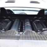 bugatti-veyron-mansory-linea-vivere-for-sale-12