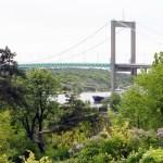 Bridge through lilacs