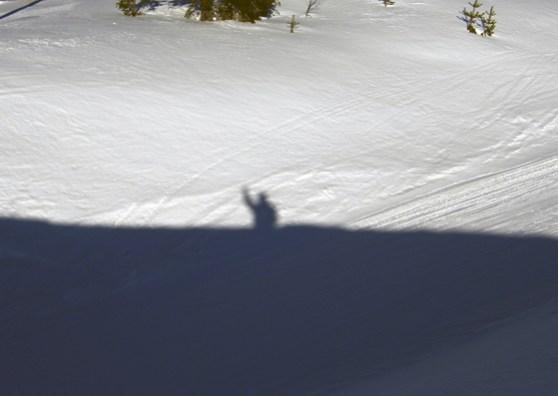My shadow waving