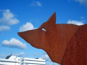 Wolf with airport building