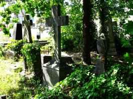 Deiweg cemetary: Overgrown tombs
