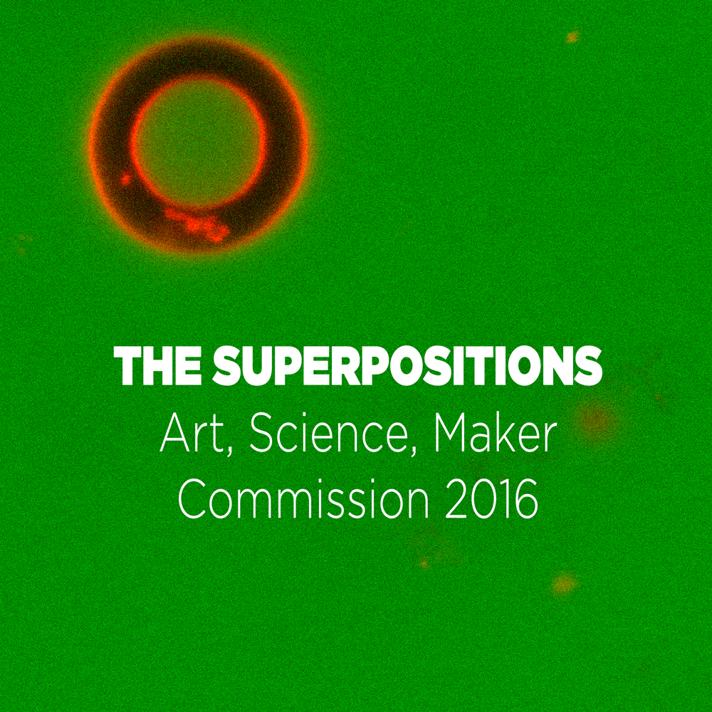 Superposition Art, Science, Maker Commission 2016