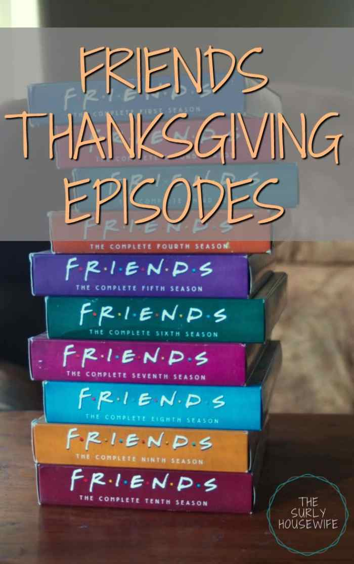 Friends is an excellent tv show to binge watch. It's funny, nostalgic, and filled with great one liners. One of my absolute favorite episodes is the Thanksgiving episode with Brad Pitt. Click here to see some of my favorite moments from the show!