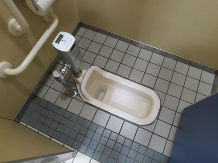 Een hurk toilet met hand sensor om door te spoelen. Image via halfwayanywhere