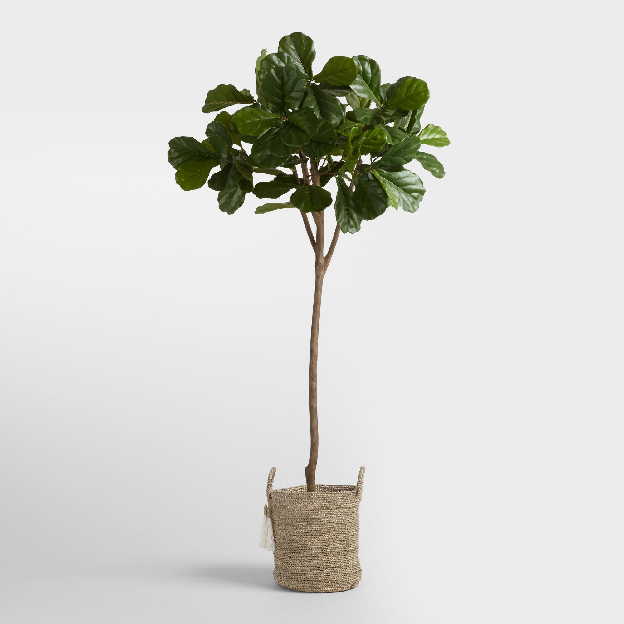 6' Faux Fiddle Leaf Fig Tree Product Photo