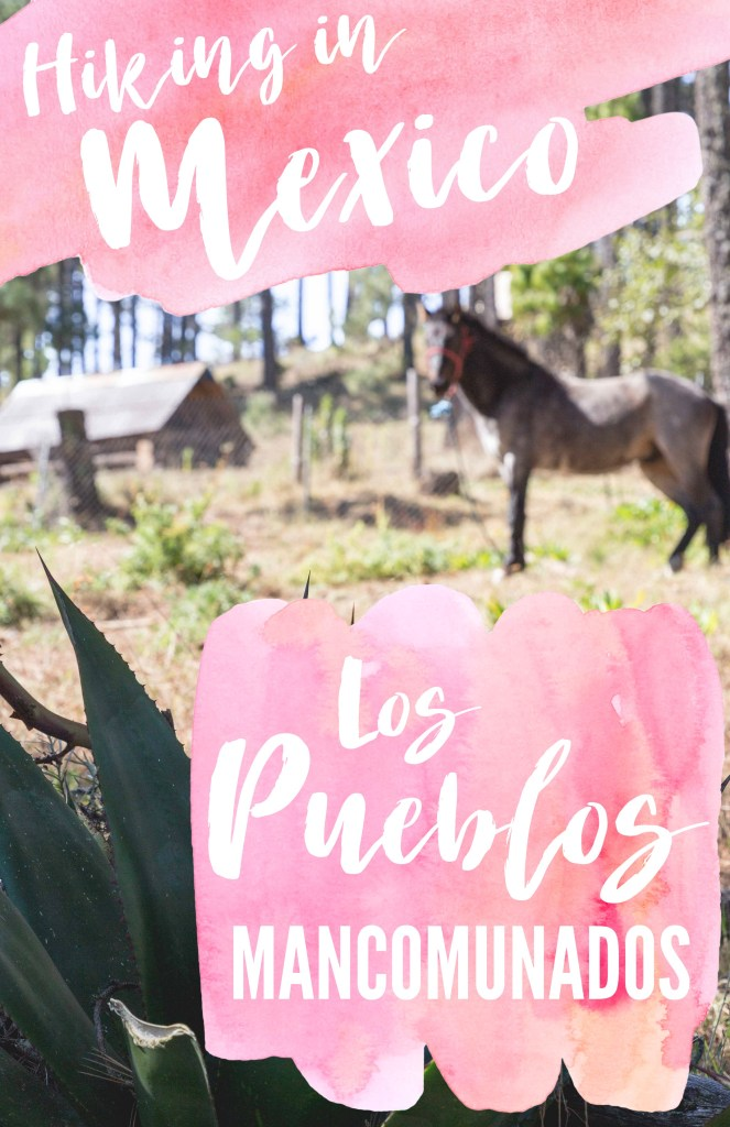 Hiking through indigenous villages in Mexico's Oaxaca State was an incredible experience! See what Los Pueblos Mancomunados are all about.