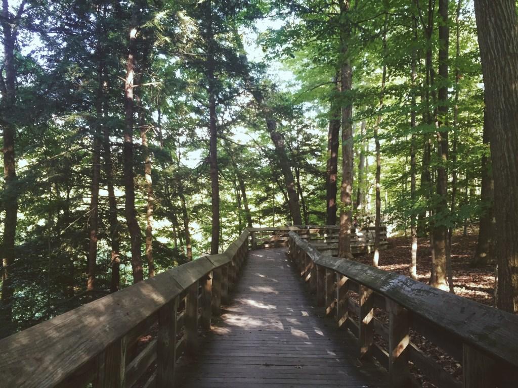 Surprisingly Affordable US Travel Destinations: Asheville, North Carolina