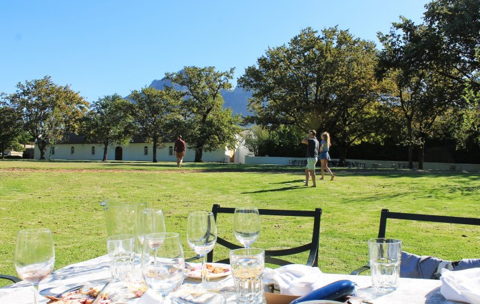favourite-vineyards-wine-tasting-western-cape-travel-guide-top-things-to-do-in-cape-town-south-africa-boschendal-stellenbosch