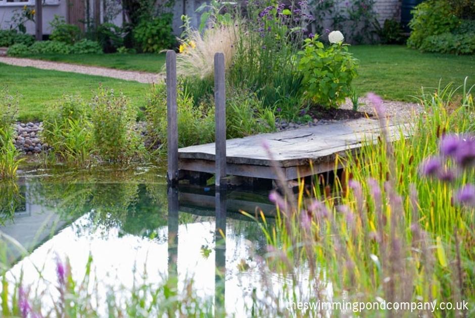 Pond Design Norfolk