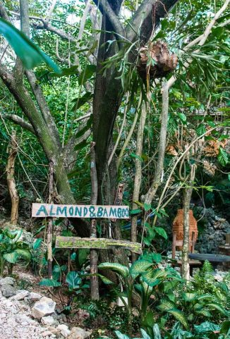 Signs along the Pathway