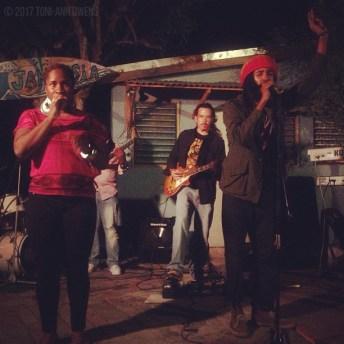 Protoje at Jamnesia 2013 (St. Thomas, Jamaica) © 2017 Toni-Ann Owens