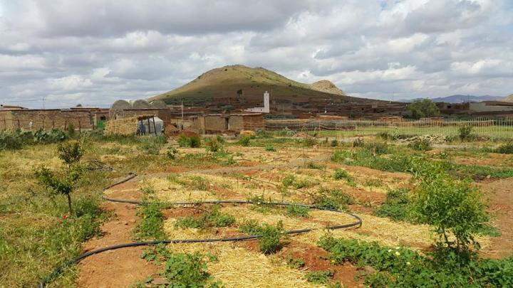Combinant l'agroécologie et la pédagogie au Maroc |The Switchers