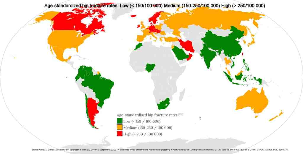Age-standardized hip fracture rates.