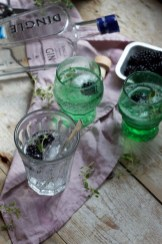 Blackberry and Thyme Gin and Tonic