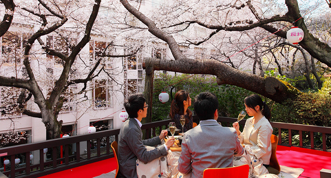 Japanese Wines: A Taste from the Terroir of the Rising Sun