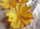 Pineapple Flower Pineapple & Passion Fruit Pavlova Recipe by Niamh Mannion