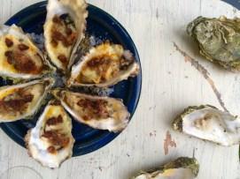 Oysters Darina