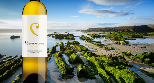 Contrapunto Albarino 2015 – Wine of the Week from O'Briens