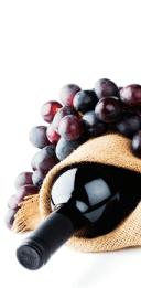 Win a Hamper of Fine Wines from Navarra to Celebrate the Fiesta de San Fermín