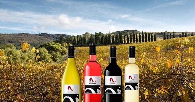 Discover a Taste of Wines from Navarra this October at the Wines from Spain Fair