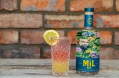 Mil Gin Launch 22