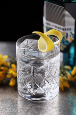 METHOD AND MADNESS Irish Micro Distilled Gin - Key Serve with Poachers Tonic Water
