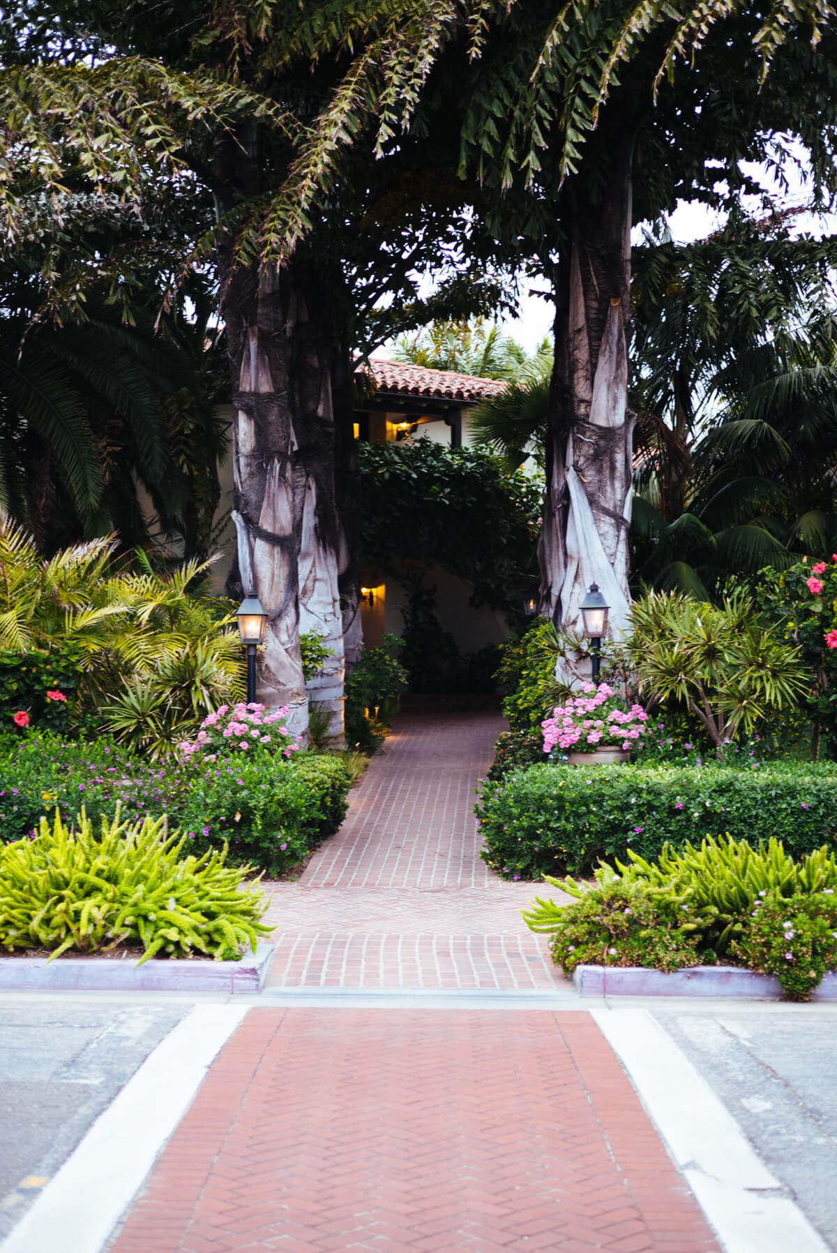Palm tree entrance to the Four Seasons Santa Barbara, see more on The Taste SF