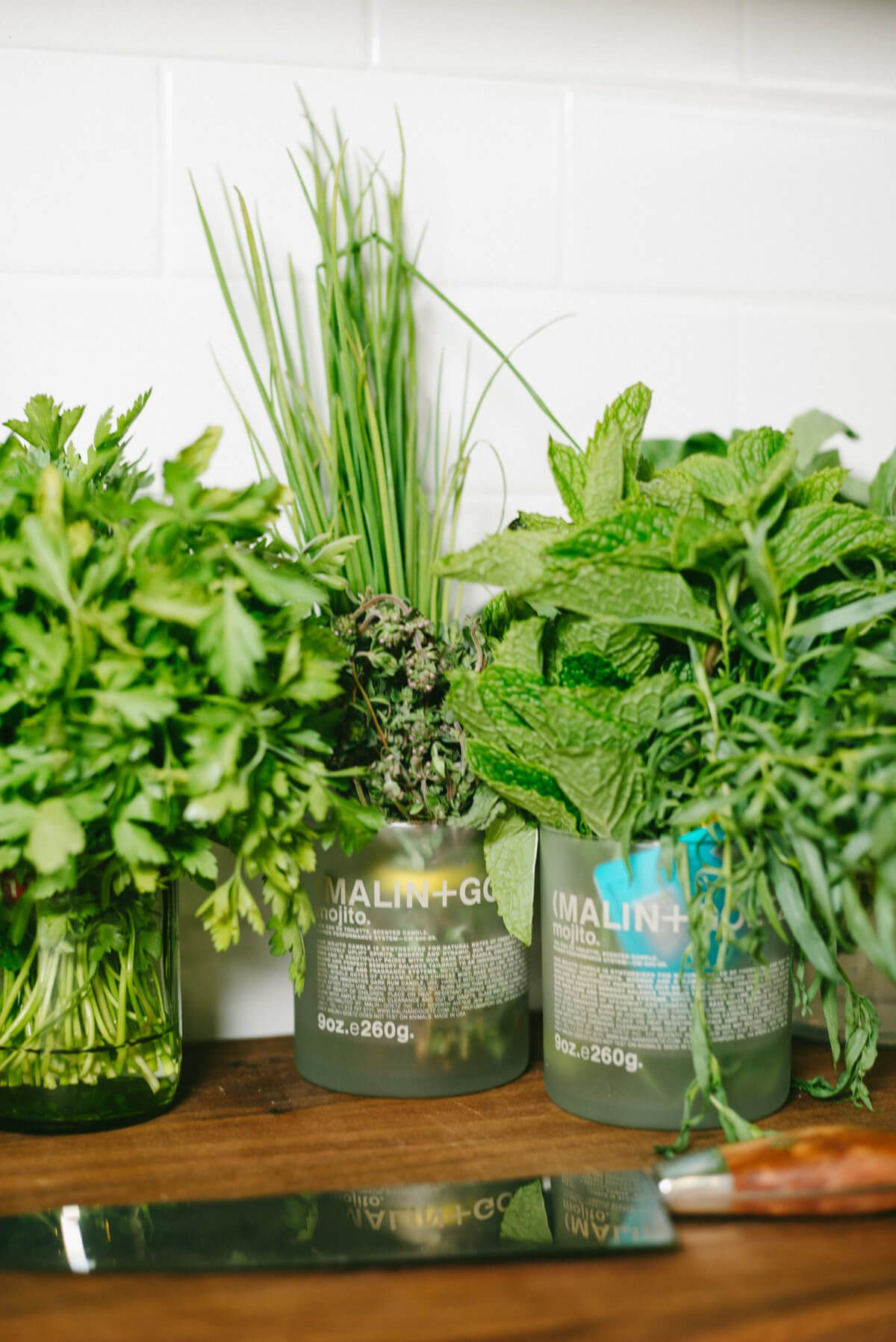 Herbs stored in glasses on the counter