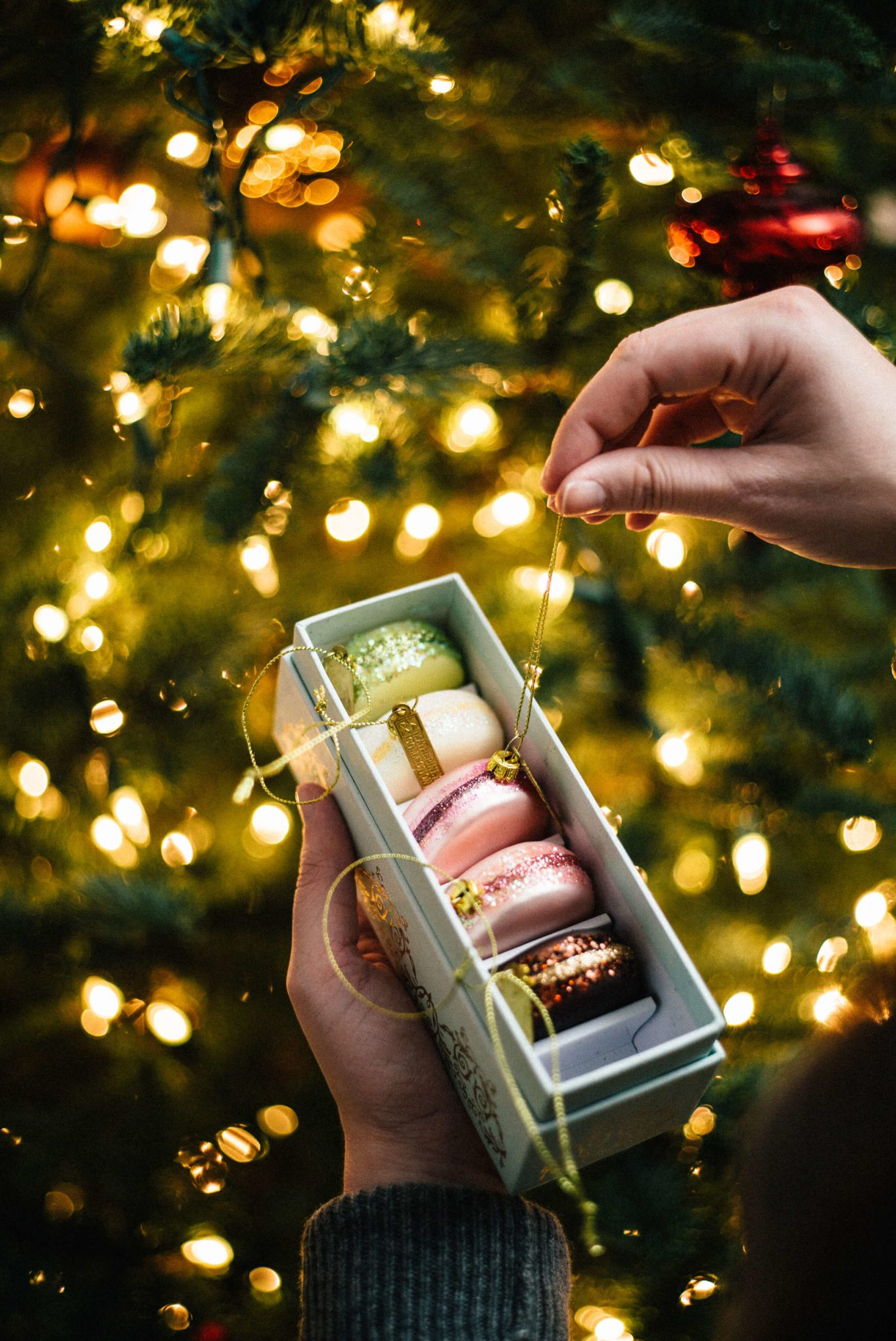 Ornaments decorating the christmas tree with the taste sf adds macaroons to their christmas tree