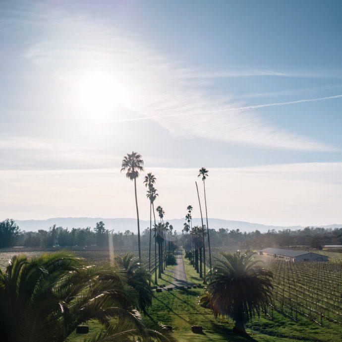The Taste SF visits Scribe Winery Hacienda in Sonoma