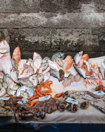 The Historic Catania Fish Market You Wont Want to Miss