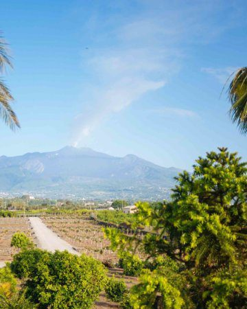 Living the Sicilian Life
