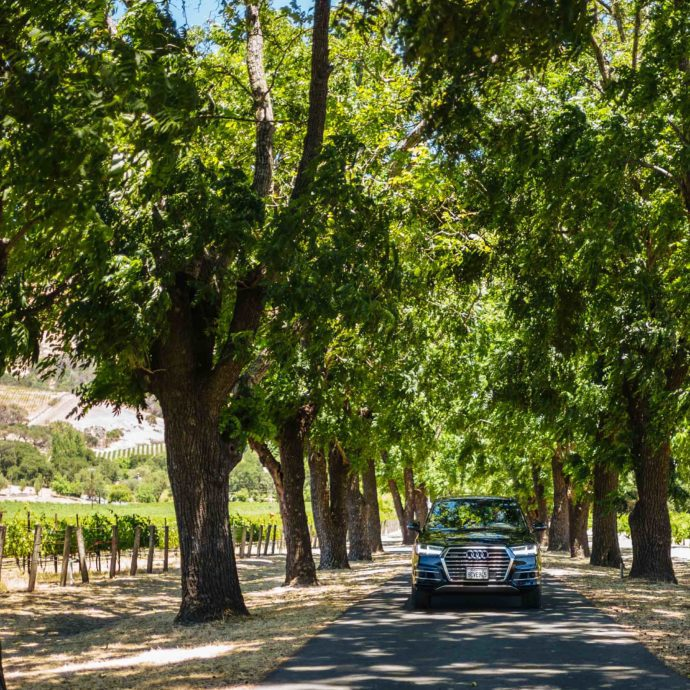 Take your Audi on a day trip to Napa