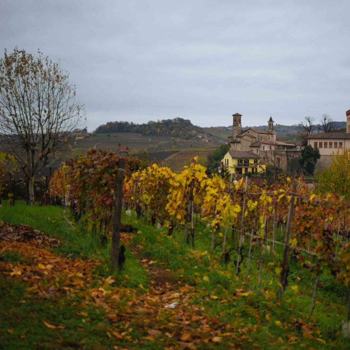 Brezza is located just at the edge of town of Barolo, view from the tasting rooms