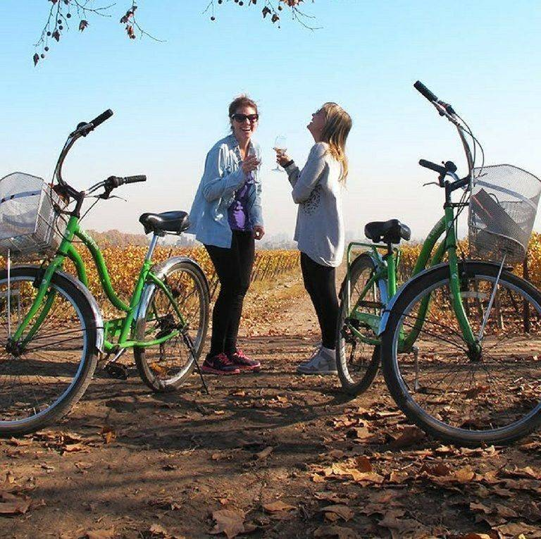 people drinking wine in a vineyard, on bikes