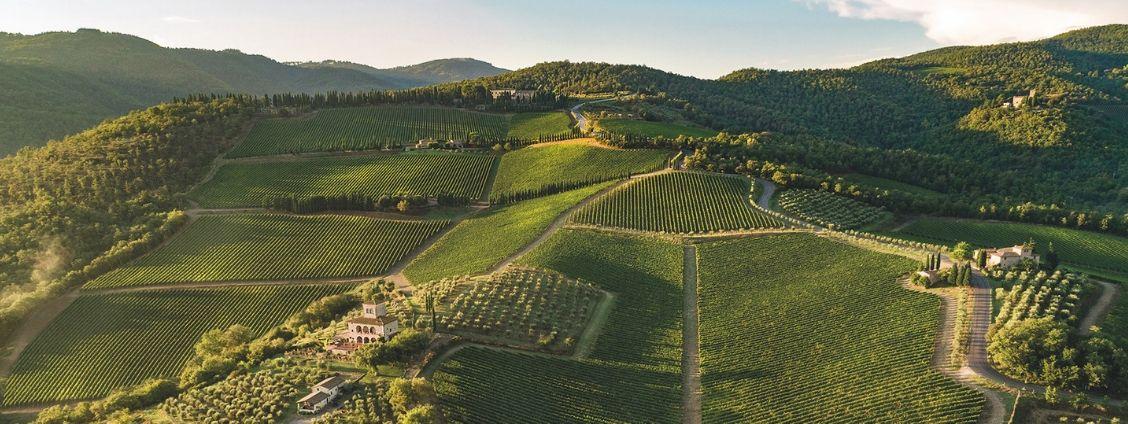 Italian Wine Lesson: Focus on Tuscany