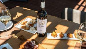spanish wine tasting & tapas
