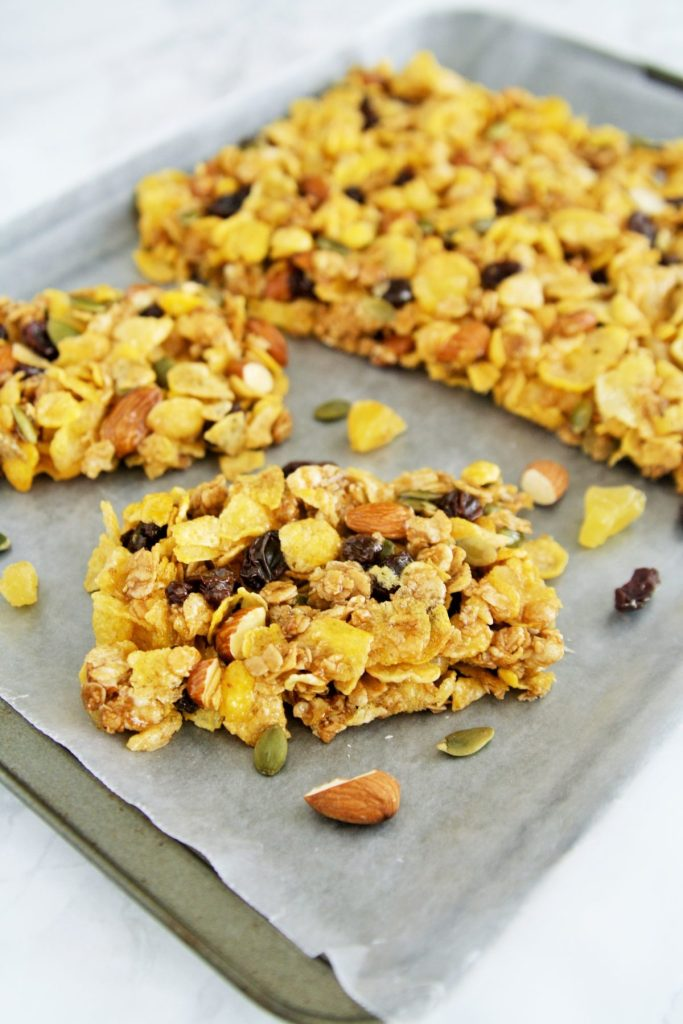 honey-trail-mix-cereal-bars-4