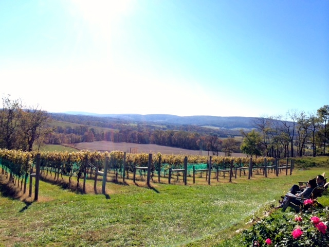 Hillsborough Vineyards Loudoun County, VA