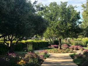 Ram's Gate gardens