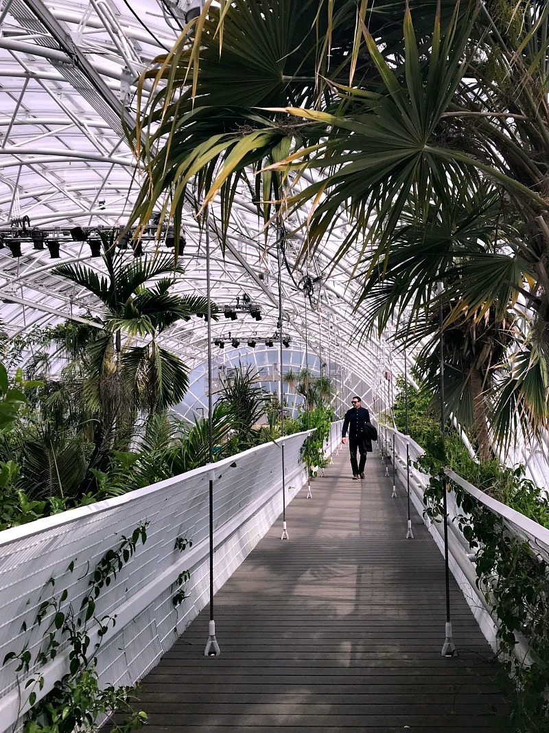 walking the Crystal Bridge