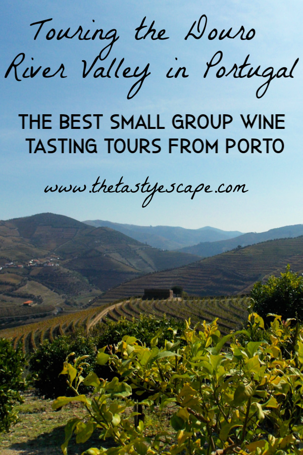 The Best Small Group Wine Tasting Tours from Porto, Portugal
