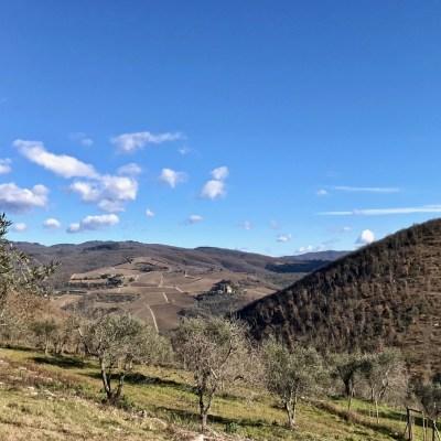A Tuscan Wine Tour: Exploring Italy's Chianti Region