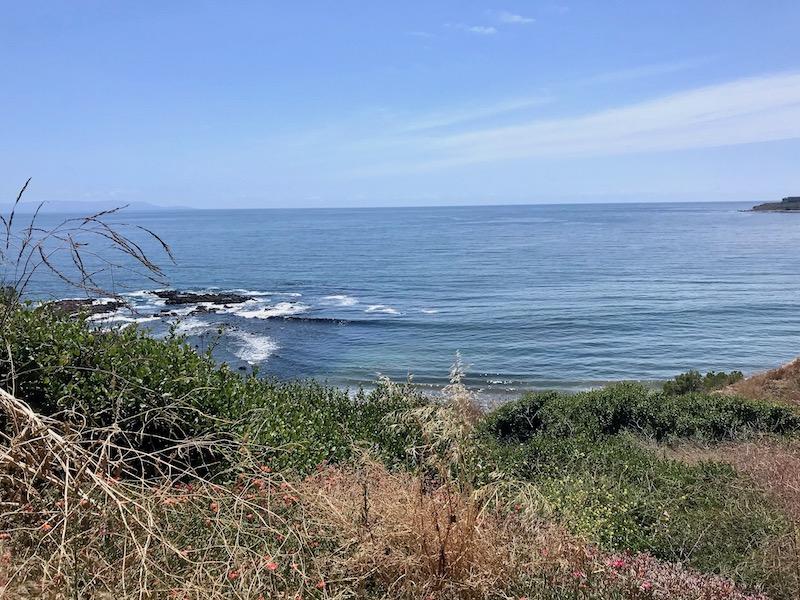 hiking abalone cove