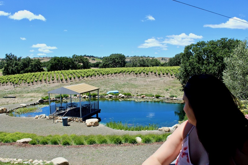 Beckman Vineyards in Santa Barbara County