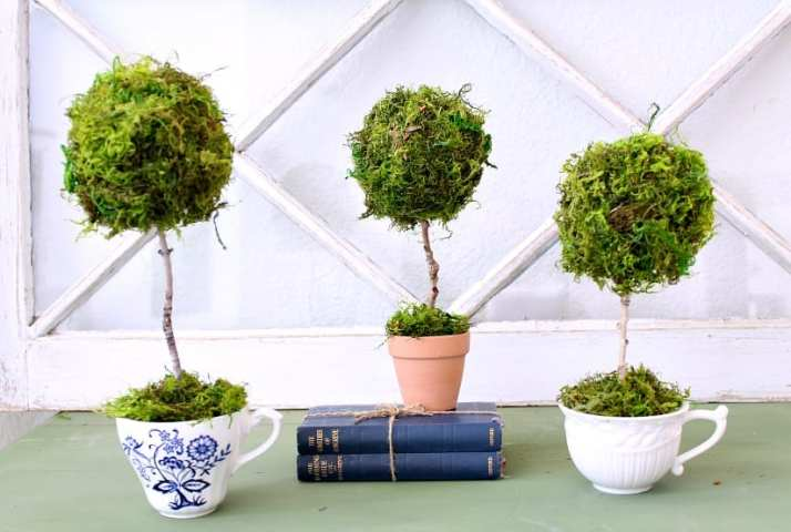 How to make a teacup topiary.
